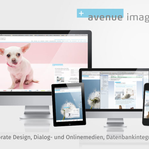 Corporate Design, Dialog- und Onlinemedien, Datenbankintegration