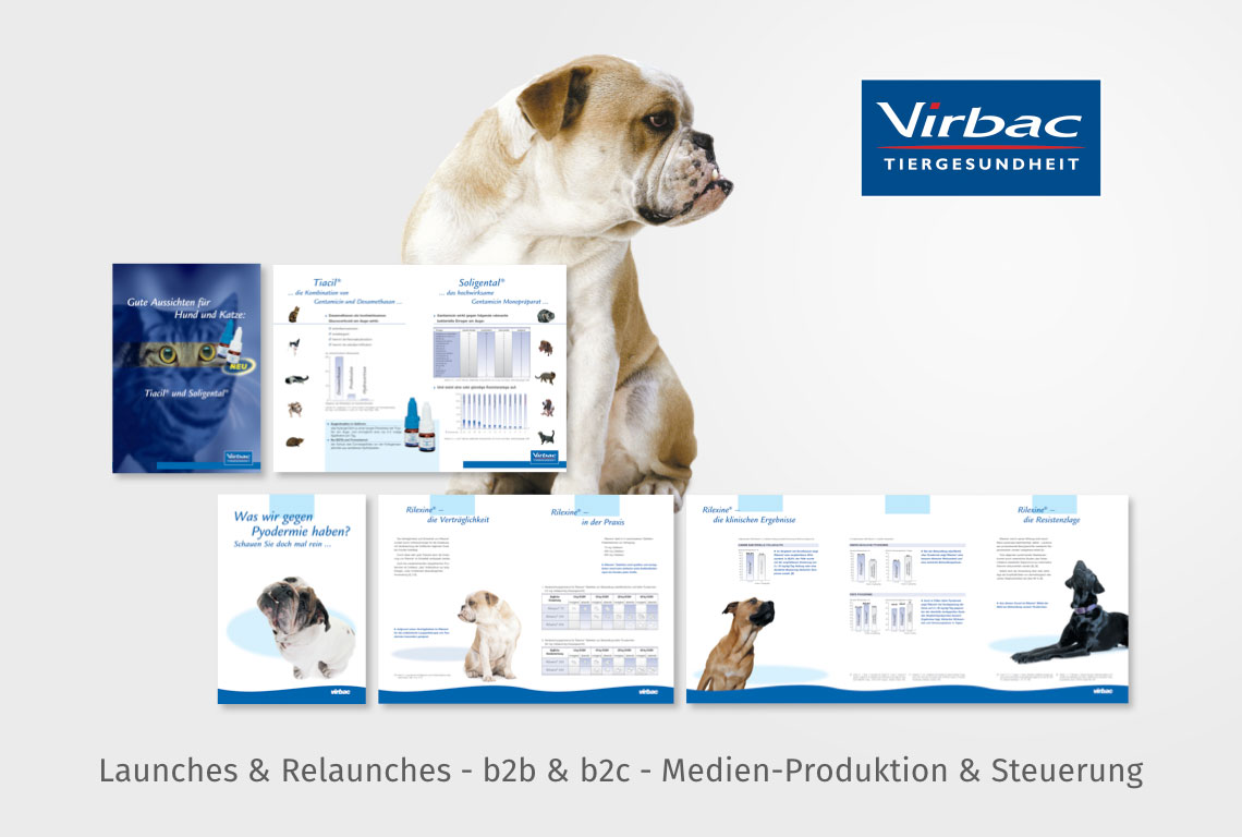 Launches & Relaunches - b2b & b2c - Medien-Produktion & Steuerung
