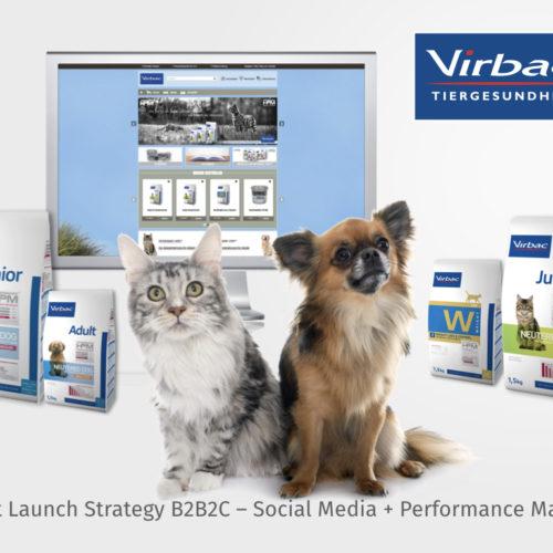 Eintwicklung einer Produkteinführungsstrategie B2B2C – Social Media, Performance Marketing und CRM